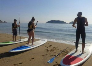 Paddle Surf Rental Courses